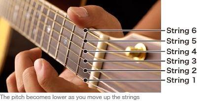 Diagram di bawah ini menunjukkan penyetelan biasa, yang mengacu pada nada yang dihasilkan dari setiap senar saat tidak ditekan dengan tangan kiri.